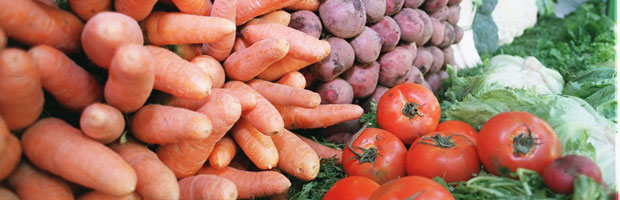 verduras-dest