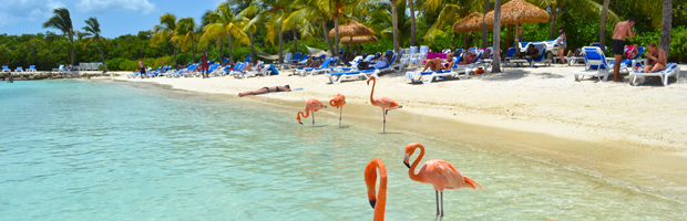 Caribe-Aruba