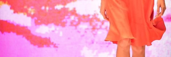 falda-destacada