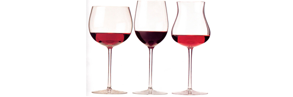 vinos-destacada