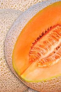 melon-dentro