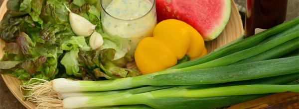 destacad nutrientes