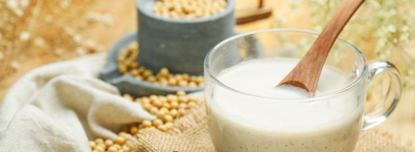 leche de soja portada