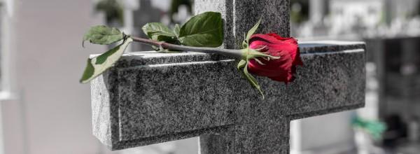 rose-cementerio-lapida_11055-936